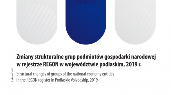 Structural Changes of Groups of the National Economy Entities in the REGON Register in Podlaskie Voivodship, 2019